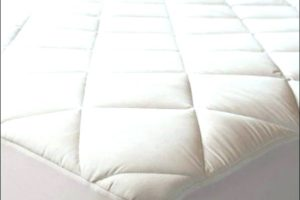 anti-bed-bug-mattress-protector-sleepsafe-premium-cover-twin-bugs-bedroom-bedrooms-awesome